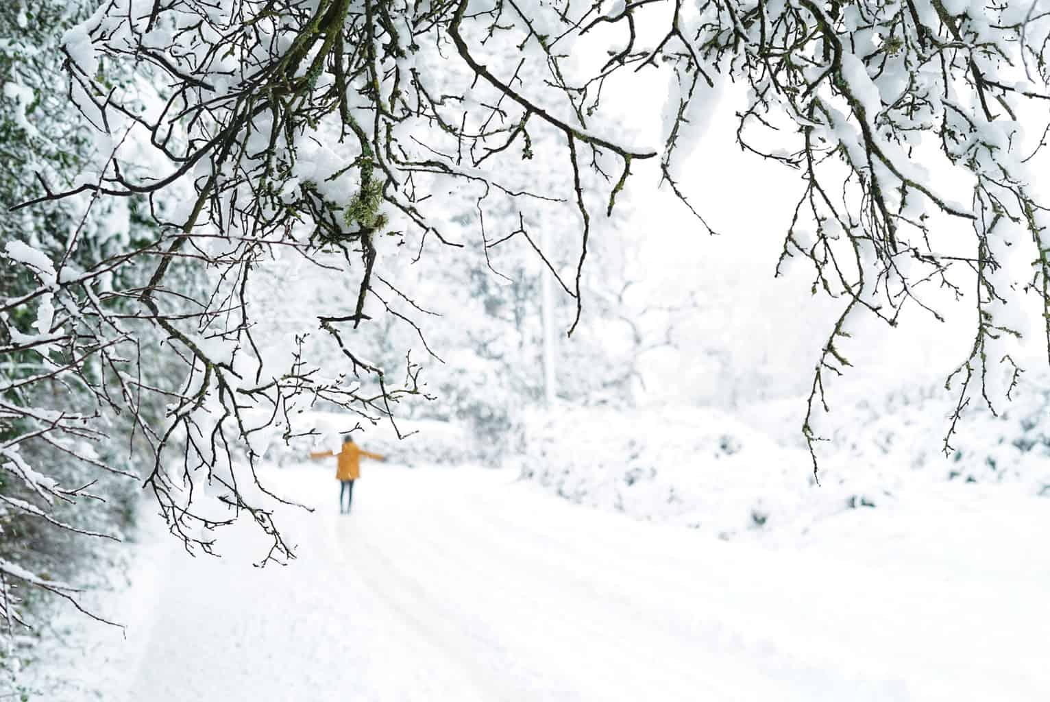 Regatta coat crocs wellies snow